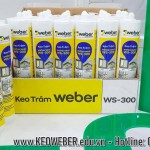 Keo Silicone Weber WS-300