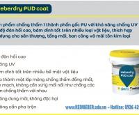 Chat chong tham san mai be tong cao cap cua PHAP, chat luong Chau Au, Nhap khau, chong tham tuyet doi san Mai be tong, tam san be tong khi chung ap AAC