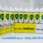 Keo tram WEBER SILICONE WS-500 Goc trung tinh