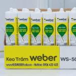 Keo Weber Silicone Cao cap WS-300